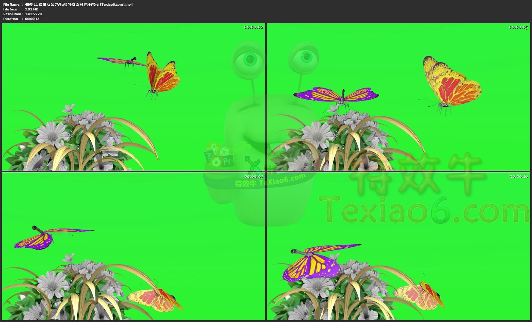 蝴蝶11 绿屏抠像 巧影ae 特效素材 电影精灵[texiao6